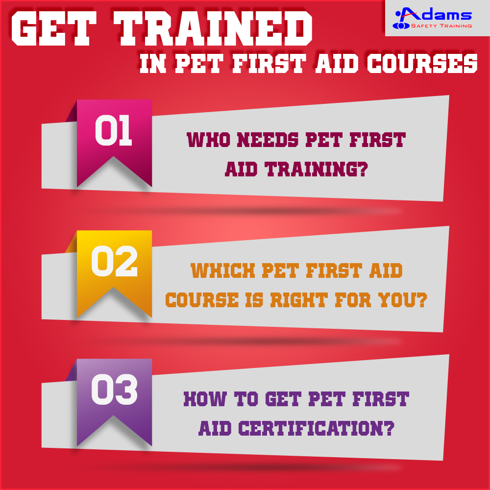 Get trained in Pet First Aid Courses