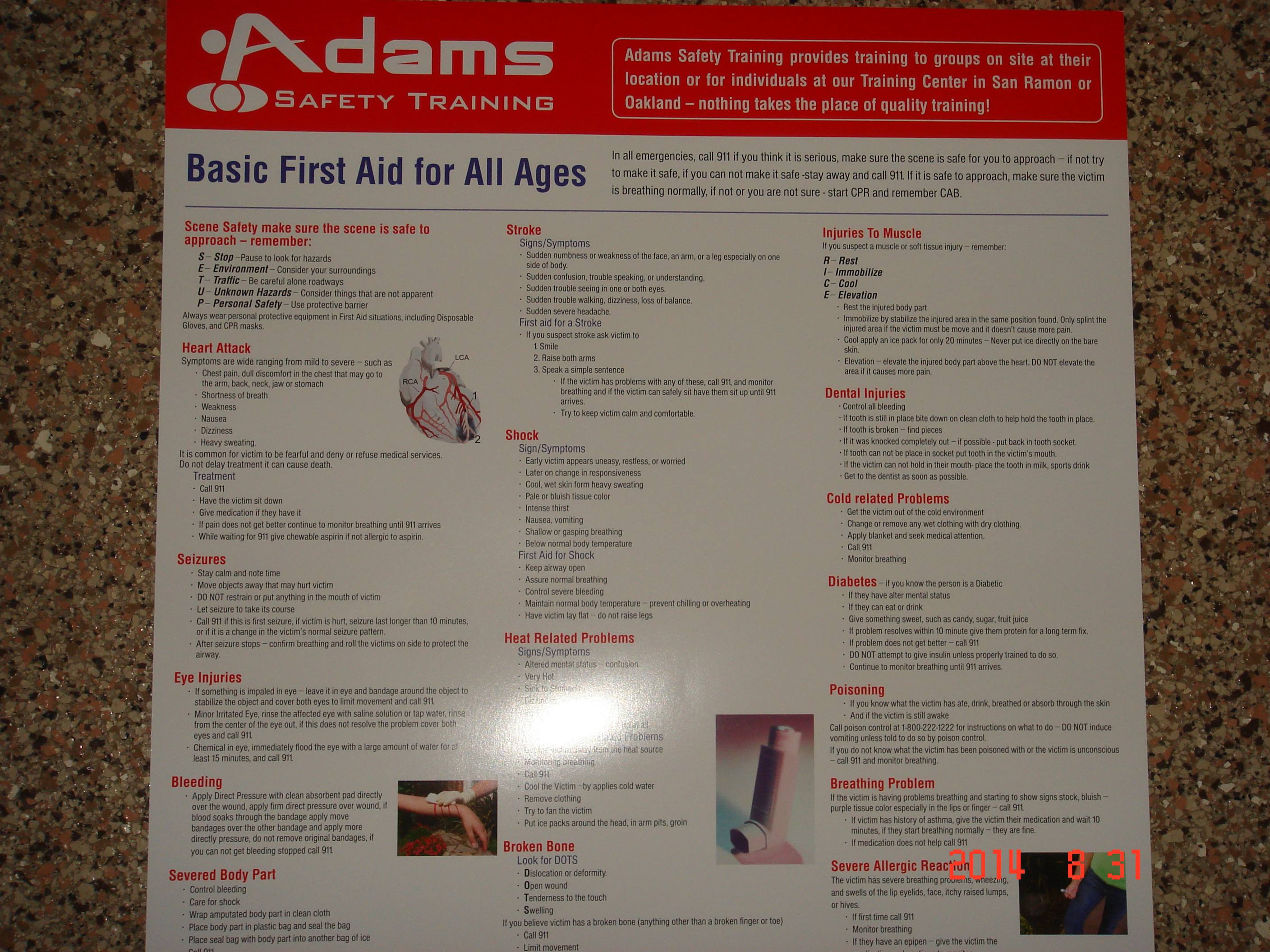 First Aid Poster for Infant, Child & Adults