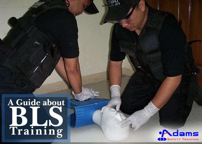 BLS-training