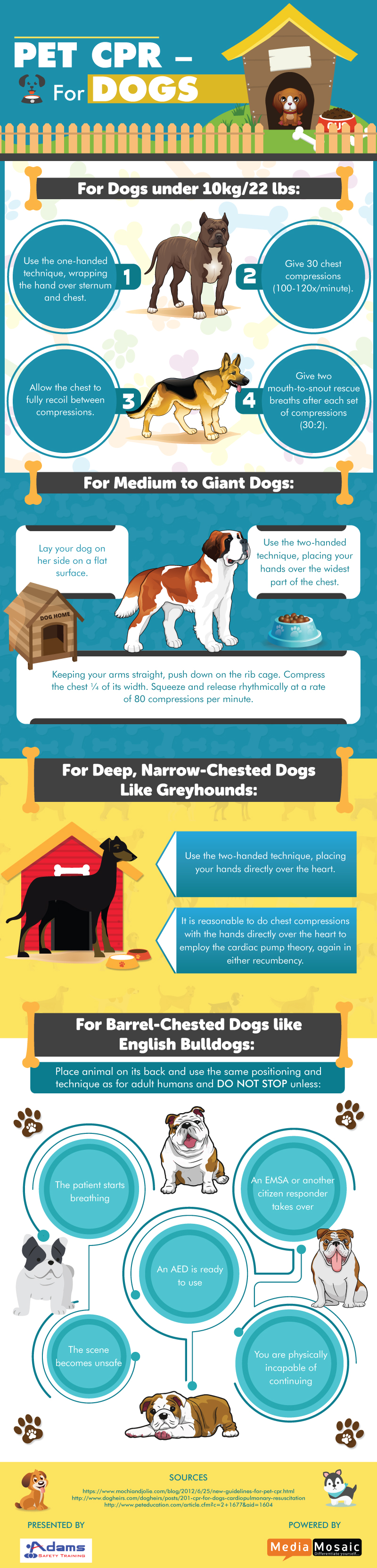 Pet-CPR-for-dogs.jpg?%20